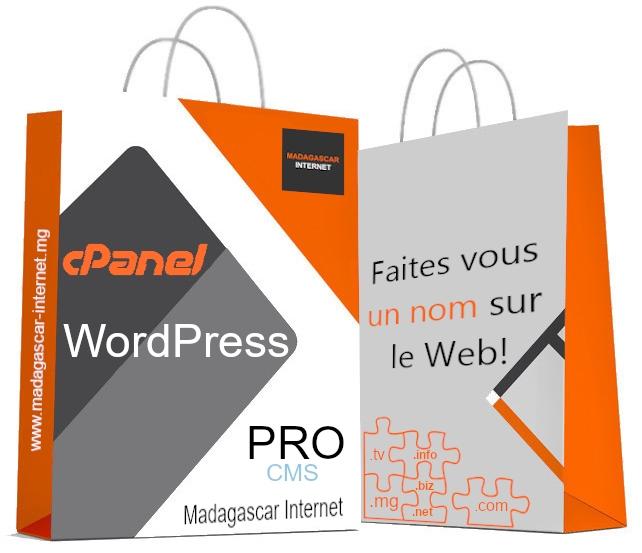 hébergement WordPress Pro